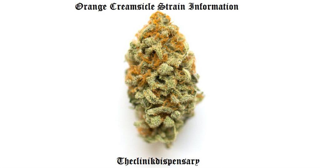 orange creamsicle strain